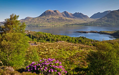 Some days ( In Explore ) (trojanhorse1956) Tags: torridon scotland nikon