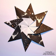 Blueberry Star (AnkaAlex) Tags: origami origamistar paperfolding paper paperfoldingart origamiart origamist