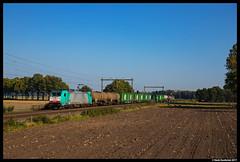 Lineas 2834, Notter 15-10-2017 (Henk Zwoferink) Tags: wierden overijssel nederland nl lineas notter nmns nmbs alpha trains henk zwoferink bombardier traxx 186 226 2834 b cargo logistics sweden xpress green