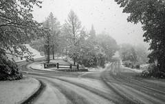 Snow treat (OzzRod (on the wallaby)) Tags: pentax k1 smcpentaxfa31mmf18 landscape snow monochrome blackandwhite monovember2018 queenstown newzealand