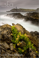 ...sEa (Jose Regueiro) Tags: frouxeira galicia seascape coast wave sea ocean