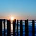 Sunset on north sea - Belgium