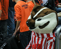 Bucky Badger (RPahre) Tags: ncaa volleyball champaign illinois huffhall huff universityofwisconsin badger buckybadger mascot