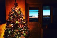 Merry Christmas Everyone 🎄 (AMRosario) Tags: ifttt instagram