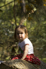 Tabby on a big rock (louisa_catlover) Tags: portrait family child toddler daughter tabitha tabby maranoa maranoagardens outdoor nature afternoon spring november melbourne victoria australia canon 60d 100mm