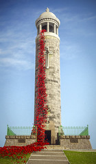 Memorial (November 2018 #4) (Lazlo Woodbine) Tags: blender 3d monument tower poppy poppies memorial november 2018 remembrance armistace