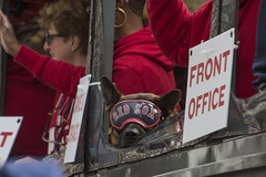 Red Sox Parade_20181031_162 (falconn67) Tags: redsox worldseries parade champions 2018worldseries baseball mlb boston duckboat canon 5dmarkiii 35350mmf3556usml copleysq dog goggles