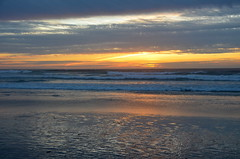 DSC_0475 (afagen) Tags: california pacificgrove asilomarstatebeach montereypeninsula asilomar beach pacificocean ocean sunset dusk