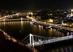View of the Danube (RobW_) Tags: river view gellert hill citadella budapest hungary amaviola danube 16nov2018 november 2018