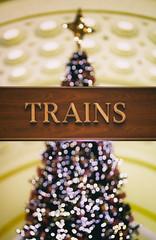 Trains (8230This&That) Tags: christmas christmastree dc unionstation washingtondc holidayseason trainstation tree trains
