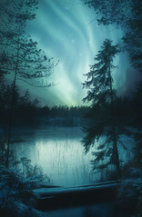 028 (petrisalonen) Tags: nature finland suomi landscape revontulet lake ice frozen auroraborealis northernlights north green atmosphere astrophotography flickr trees fire snow cold colors night nightsky nightphotography white stars