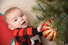 2018-12-25 11.43.22 (whiteknuckled) Tags: christmas fayetteville smiths family trip 2018 joshua under tree day opening presents