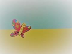 Happy butterfly (Hannelore_B) Tags: schmetterling butterfly minimalism lookingcloseonfriday
