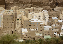 View Of The Typical Buildings At The Bottom Of The Mountains, Shibam, Yemen (Eric Lafforgue) Tags: arabia arabiafelix arabianpeninsula architectural architecture building colourpicture day dry hadhramaut hadhramawt hadhramout hadramaout hadramawt hill historical history horizontal house housing mountain mudbrick nodecoration nopeople ochre palmtree placeofinterest plants shibam sienna typical village wadidoan yemen mg5643