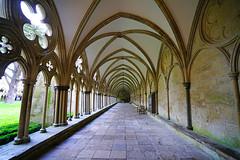 Salisbury Cathedral cloister, England (Andrey Sulitskiy) Tags: salisbury wiltshire england uk