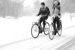 fighting against the elements (Rien van Voorst) Tags: streetphotography straatfotografie strasenfotografie fotografíacallejera photographiederue fotografiadistrada monochrome city urban highcontrast nederland dutch thenetherlands paysbas niederlände winter snow sneeuw schnee cold kalt koud fiets fahrrad bike
