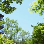 集合住宅 〜「団地」から「まち」へ〜の写真