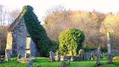 Autumnal Boneyard 01 (byronv2) Tags: scotland campsies campsiehills hills ruin graveyard cemetery boneyard history gothic campsieglen church kirk tree ivy shadows