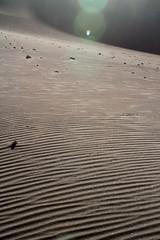 Chili 2017 (nouailleric) Tags: chili chile atacama sanpedrodeatacama desiertodeatacama désertdatacama désert sable dunedesable amériquelatine amériquedusud southamerica cordillèredesel cordillère canon eos7d ef70200f4lisusm landscape paysage voyage travel travelphotographie valléedelalune valledelaluna