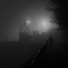 Heavy Rain (Rob Pitt) Tags: heavy rain texture fog night atmospheric sony a7rii canon 70200 f4 l wirral easthamferry blackwhite