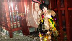 974 (Tomomi alpaca Homewood / Vacation until April) Tags: tomoto katat0nik japonica kirinposes monso hinansho kimono japanesestyle bunny happynewyear greeting 2019