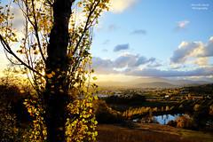 Magic World (guitarmargy) Tags: sunset canon world nature paesaggio landscape panorama mondo tramonto sun lake colors trees foglie sole sera valtiberina tuscany marcellobardi photographer picture cielo nuvole sky clouds