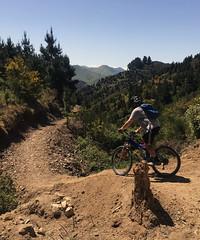 Barney Rubble (Wozza_NZ) Tags: wairarapa carterton rivenrock mtb mountainbike bikepark nz newzealand barneyrubble bike cycling singletrack offroad