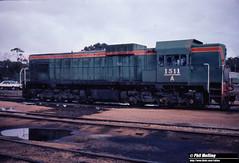 3811 A1511 Narrogin Loco 19 June 1983 (RailWA) Tags: railwa philmelling westrail 1983 narrogin loco a1511