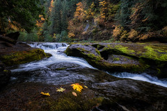 Lewis River (Joshua Johnston Photography) Tags: washington autumn fall pacificnorthwest pnw joshuajohnston landscapephotography nature sonya7iii canonef1635mmf28liii