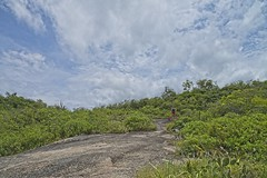 Caminho de pedras (mcvmjr1971) Tags: ilha do pontal piratininga lagoa nikon mmoraes d800e lens sigma 2435 art