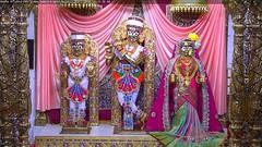 Radha Krishna Dev Rajbhog Darshan on Wed 21 Nov 2018 (bhujmandir) Tags: radha krishna dev lord maharaj swaminarayan hari bhagvan bhagwan bhuj mandir temple daily darshan swami narayan rajbhog