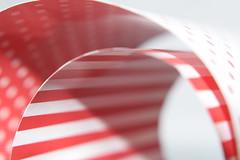 R&W (fdlscrmn) Tags: macromondays dotsandstripes dots stripes paper