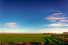 The Great Wide Open (Alfred Grupstra) Tags: ruralscene agriculture nature farm field sky landscape outdoors blue summer land nonurbanscene landscaped scenics cloudsky meadow grass nopeople sunlight tree