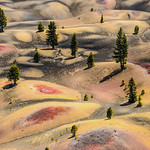 Lassen National Park / California thumbnail