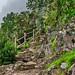 Stairway to El Cedro