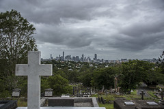 brisbane (Greg M Rohan) Tags: overcast storm stormy trees sky clouds brisbanecity australia queensland brisbane city toowong graveyard grave headstone cross cemetery d2018 d750 nikkor nikon