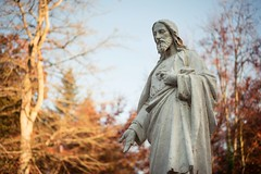Follow the guide (~ Jessy S ~) Tags: nikon nikkor nikkor50mmf18 bokeh light jesus statue pillar d750 forest foret wood bois walk hand face personnage sky blue trees