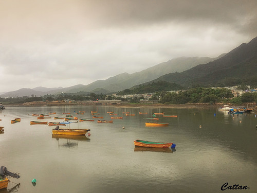 Plover Cove Country Park, Hong Kong
