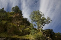 Landscape of Machen county, Tibet 2018 (reurinkjan) Tags: tibetབོད བོད་ལྗོངས། 2018 ༢༠༡༨ ©janreurink tibetanplateauབོད་མཐོ་སྒང་bötogang amdoཨ༌མདོ khamཁམས་བོད easterntibet machenརྨ་ཆེན།county tibetanlandscapepicture landscapeཡུལ་ལྗོངས།yulljongsyünjong landscapesceneryརི་ཆུ་ཡུལ་ལྗོངསrichuyulljongsrichuyünjong landscapepictureཡུལ་ལྗོངས་རི་མོyulljongsrimoyünjongrimo natureརང་བྱུང་ཁམས་rangbyungrangjung natureofphenomenaཆོས་ཀྱི་དབྱིངས་choskyidbyings earthandwaternaturalenvironmentས་ཆུ་sachu