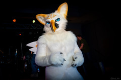 DSC08933 (Kory / Leo Nardo) Tags: pacanthro pawcon paw con pac anthro convention fur furry fursuit suiting mascot sona fursona san jose doubletree hotel california dance party deck animals costuming pupleo 2018