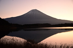 The dawn is breaking (ULTRA Tama) Tags: the dawn is breaking mtfuji mtfujiwhc japan shizuoka fuji todays dayliphoto instadaily photogenic igjapan loversnippon worldcaptures flickrfriday 2019 worldheritage tabijyo genicmag retripjapan retripshizuoka explorejapan traveljapan radiof artofimages ftimes genictravel geniclife genicblue genicjapan genicphoto genictown genicsummer tabijyosummer tabijyomaptwn tabijyotravel ybs2018 flickrheroes brilliant flickr celebrities natural decay