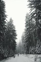Wood  Silvesterwanderung (domenicaviehberger) Tags: silvester altesjahr 2018 wood winter winterzeit family go snow goforawalk cold tree