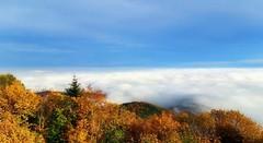 Mer de brouillard (mamietherese1) Tags: world100f earthmarvels50earthfaves cloudsstormssunsetssunrises
