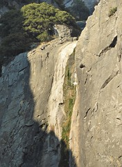 This is all that's left of Lower Yosemite Falls. (Ruby 2417) Tags: drought dry algae waterfall yosemite national park cliff rock granite scenery nature