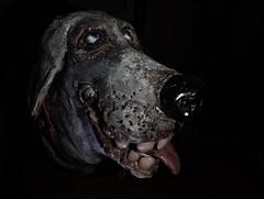 Fido (ricko) Tags: dog clay sculpture head face 19365 2019 littledoglaughedstories