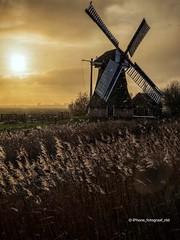 Noordermolen at sunrise (iPhone Fotograaf) Tags: clouds landscape photographer sun iphone8plus groningen sunrise dutch morning sky windmill