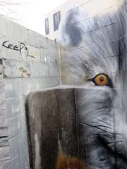 Cee Pil / Prinsenhof - 17 jan 2019 (Ferdinand 'Ferre' Feys) Tags: gent ghent gand belgium belgique belgië streetart artdelarue graffitiart graffiti graff urbanart urbanarte arteurbano ferdinandfeys ceepil