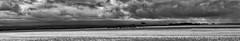 Storm Approaching (Travis H) Tags: australia blackandwhiteperfection blackandwhiteart blackandwhitephotos blackandwhitepic citifield fieldday fieldwork grassroots landscapecapture landscapehunter landscapephotography landscapespecialist landscapephoto landscapephotomag naturefeaturing naturephoto naturephotos natures nikon outdoorslife outdoorsy skycentral sky☁ skyart skyphotography skyr skysthelimit stormclouds stormtroopers victoria waterlily waterworld winchelseaaustraliavictoriawinchelseaau