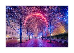 Leaves and Lights (Dave Fieldhouse Photography) Tags: london londoneye southbank millenniumwheel capital night nighttime lights illumination landamark building trees leaves autumn fuji fujifilm fujixt2 wideangle