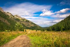 Dolina Kondratowa (ArturGabrych) Tags: poland tatry tatra mountains landscape